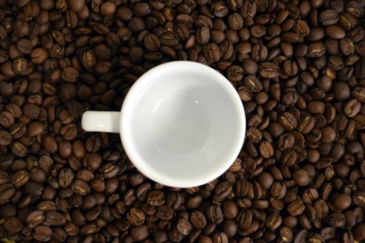 haricot, caféine, dark, cappuccino, boisson, café expresso, café
