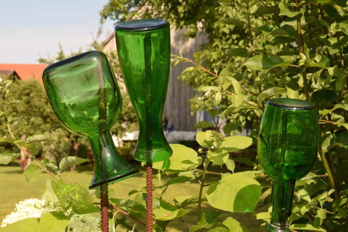 vidrio, botella, hoja, jardín, al aire libre, patio