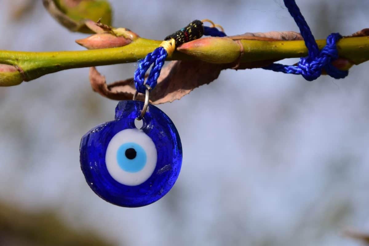 rama, hoja, naturaleza, azul de plástico, cuerda, al aire libre