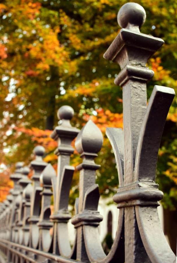 clôture, métal, fer, bois, forêt, objet