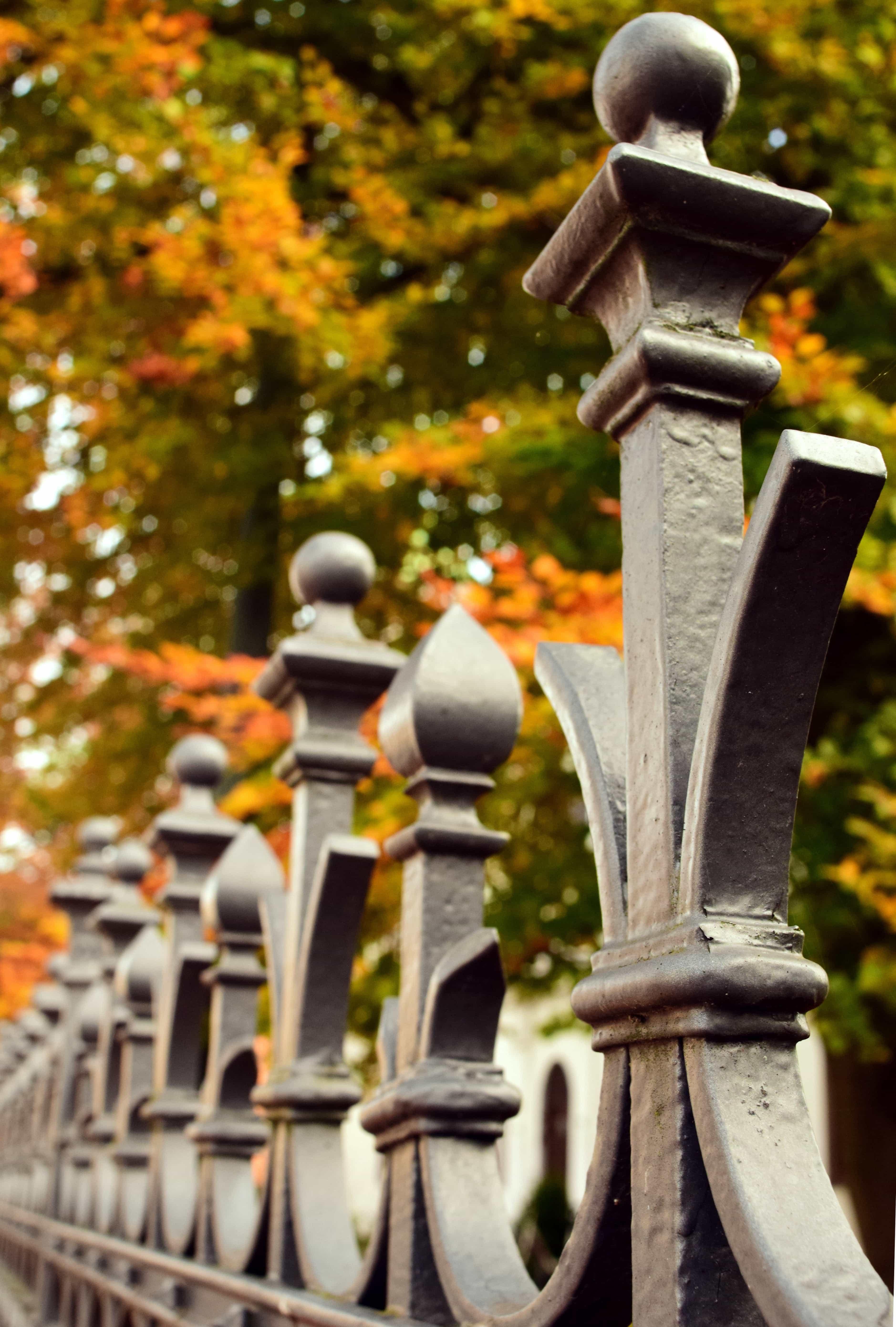 Zaun Niedrig Awesome Sichtschutz Vorgarten Steine With Zaun
