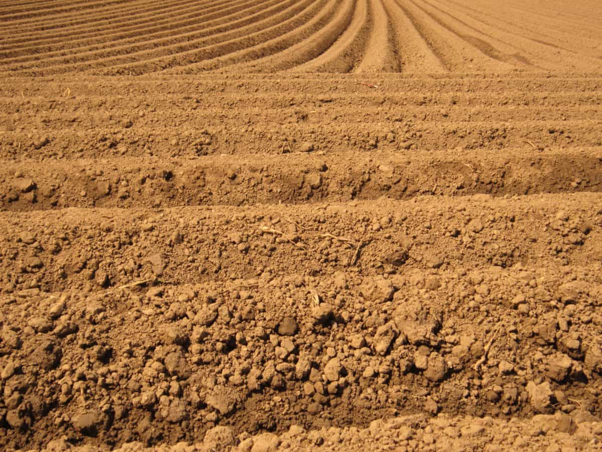 soil, dry, agriculture, ground, soil