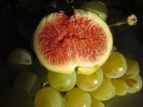 fruit, nourriture, fig, vitamine, sweet, tranche