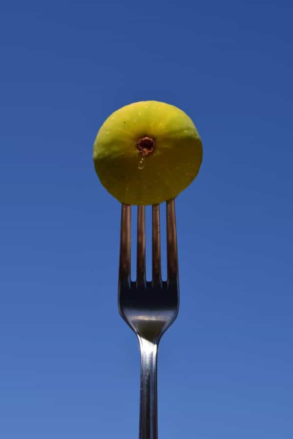 fork, metal, tableware, cutlery, fig, fruit, food