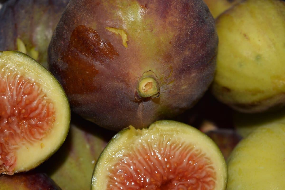 sweet, exotic, nutrition, delicious, fruit, fig, food, diet