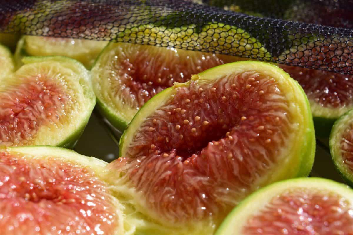 alimento, fruta, nutrición, higo, dulce, dieta