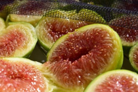 nourriture, fruits, nutrition, fig, sweet, régime alimentaire
