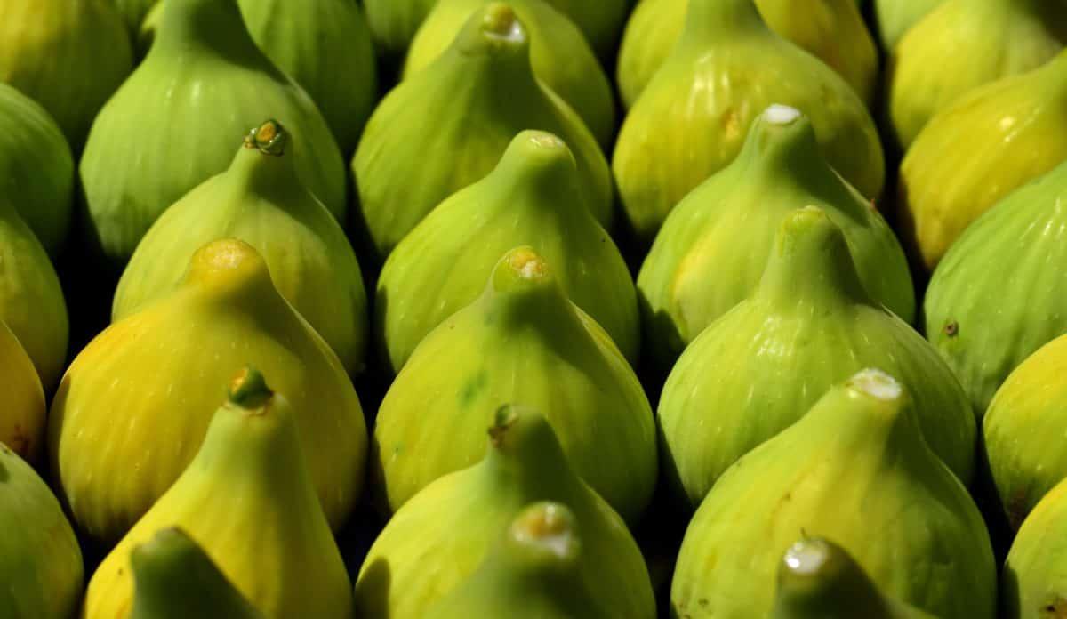 cibo, natura, frutta, fichi, verde