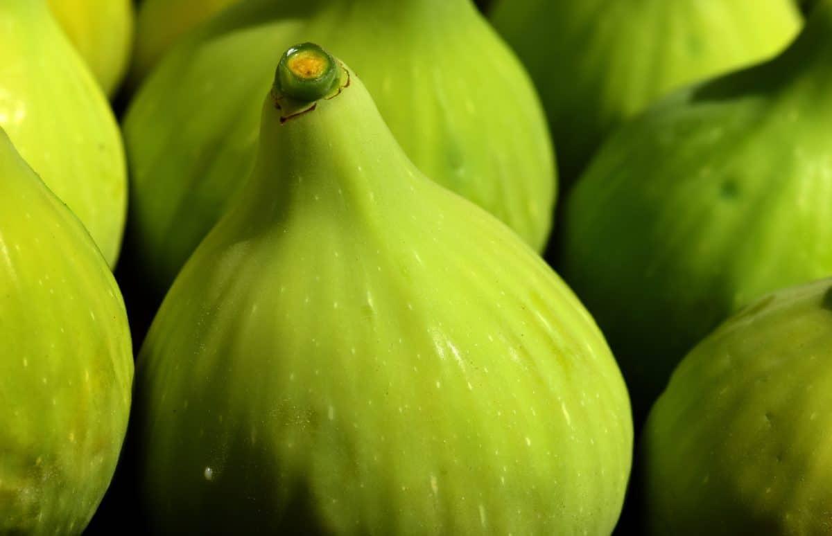 mad, natur, figen, frugt, vitamin, økologisk