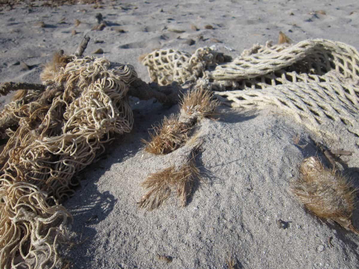 Открытый, природа, пляж, песок, веревка, нетто