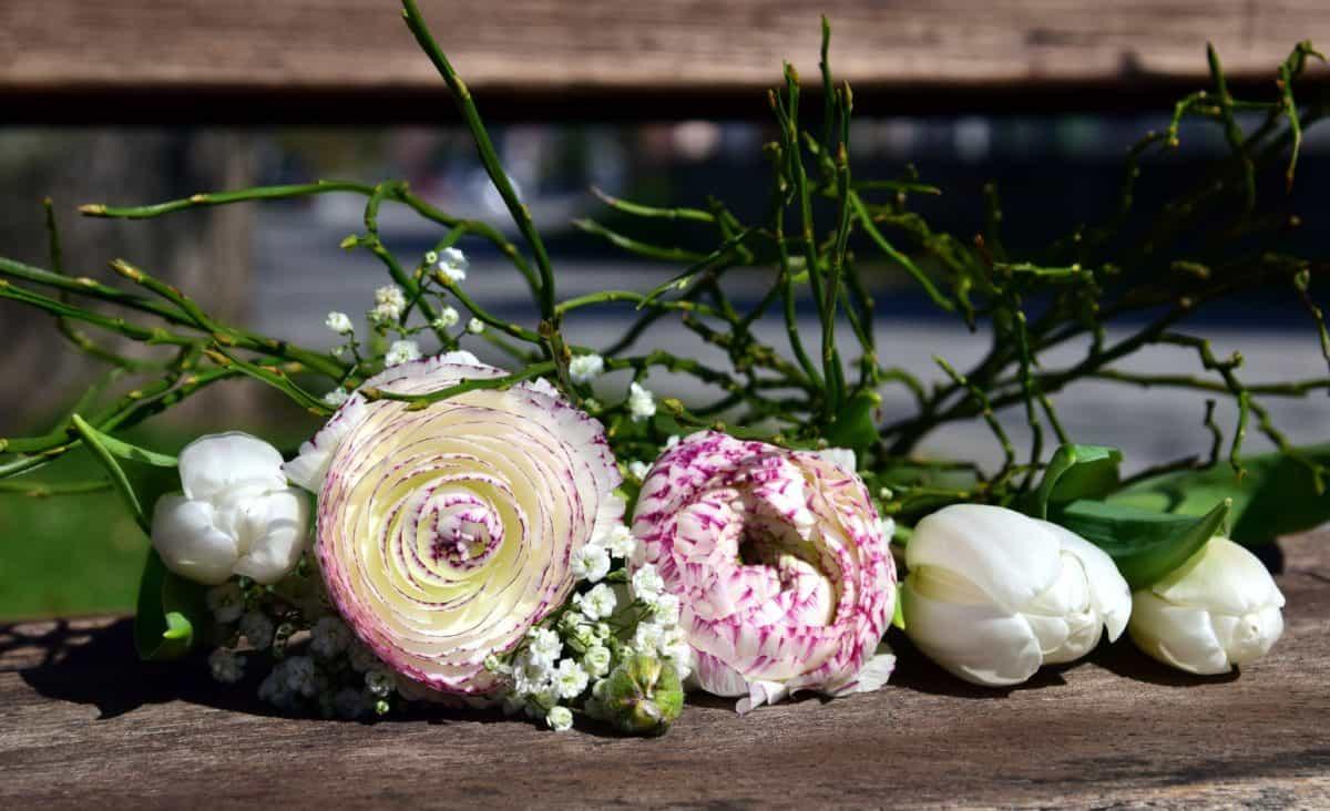 nature, flora, flower, garden, rose, arrangement