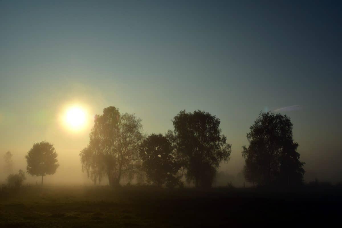 aube, paysage, brouillard, coucher de soleil, silhouette, ciel, soleil