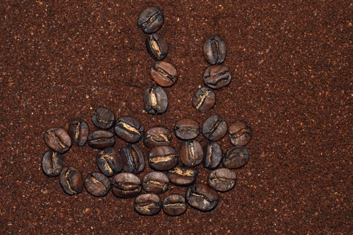 semillas, carne asada, café, marrón, cafeína, marrón, detalle, macro
