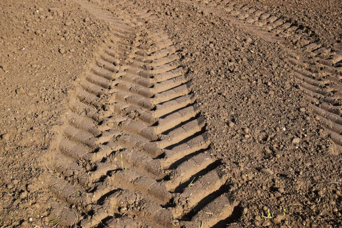 ground, texture, pattern, field, tire track, soil