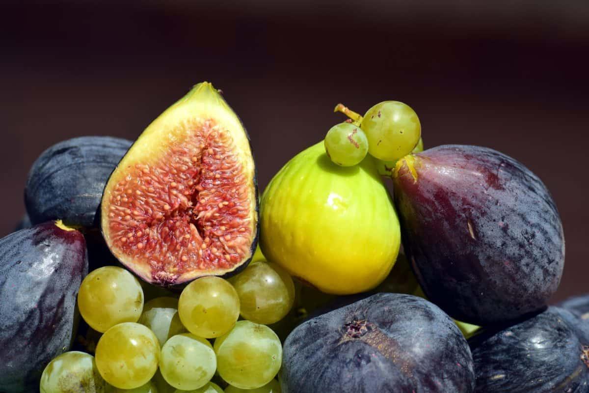 delicioso, fruta, comida, uva, nutrición, fig, orgánica, dulce, dieta