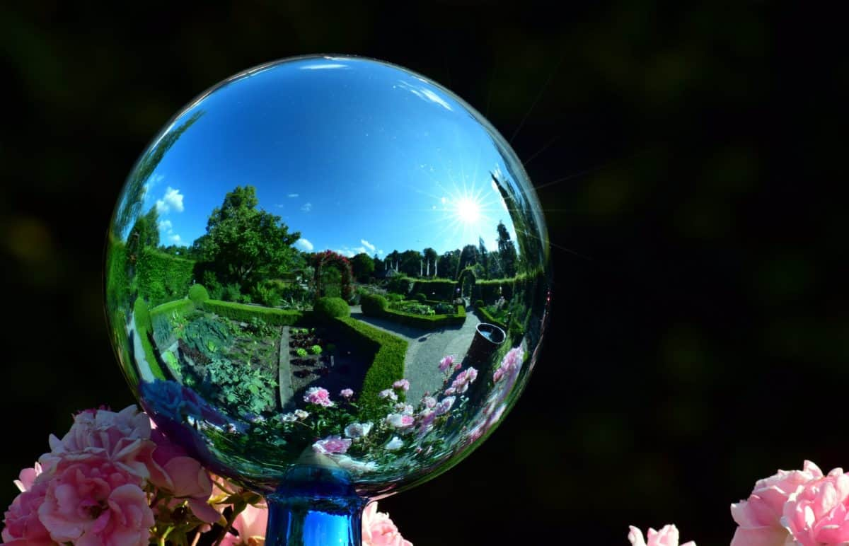 flower, glass, outdoor, ball, mirror, reflection, garden, wood