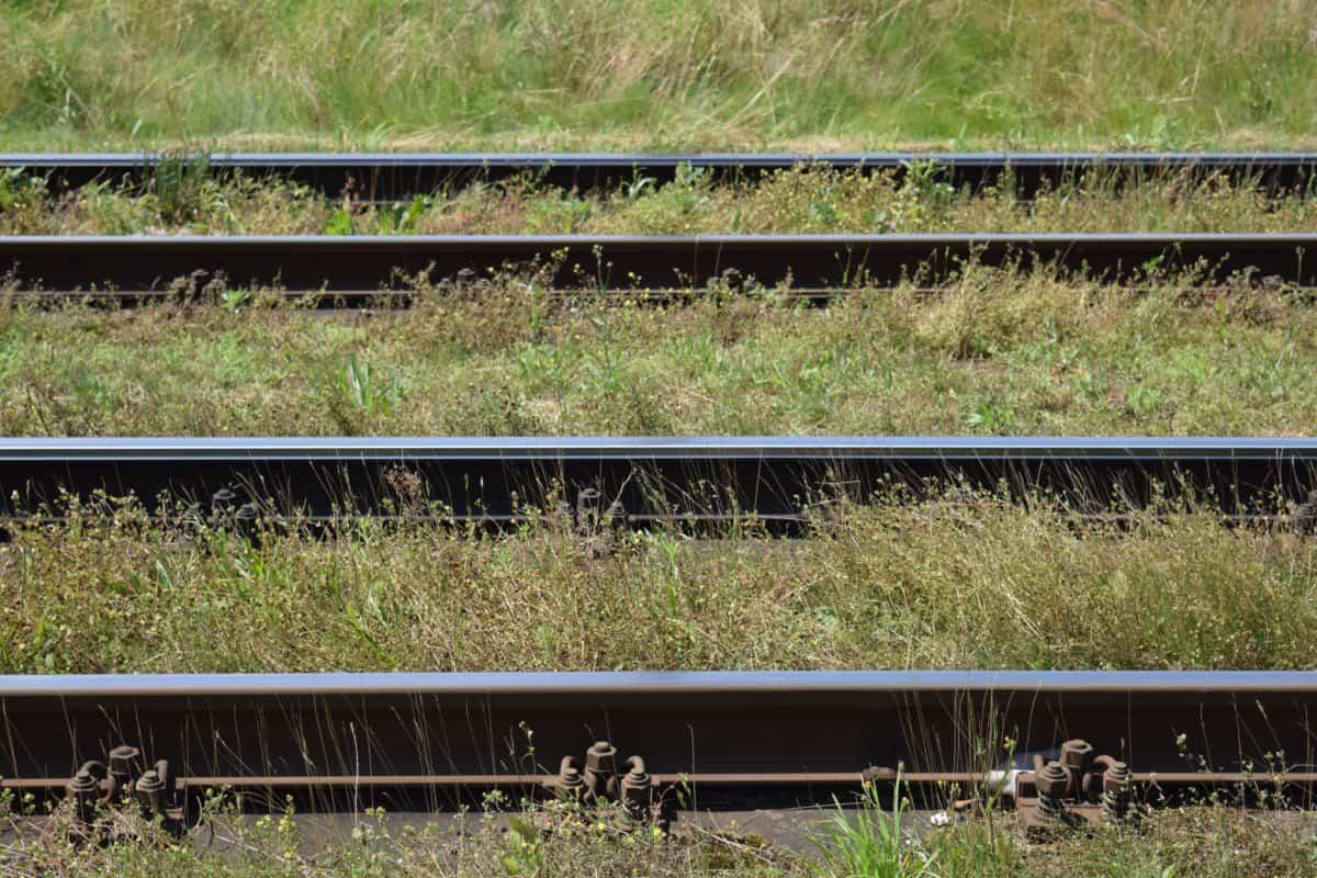 ferrocarril, locomotora, tren, ferrocarril, transporte, tren
