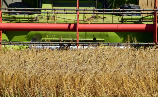paille, moissonneuse, grain, agriculture, alimentaire, champ, machine
