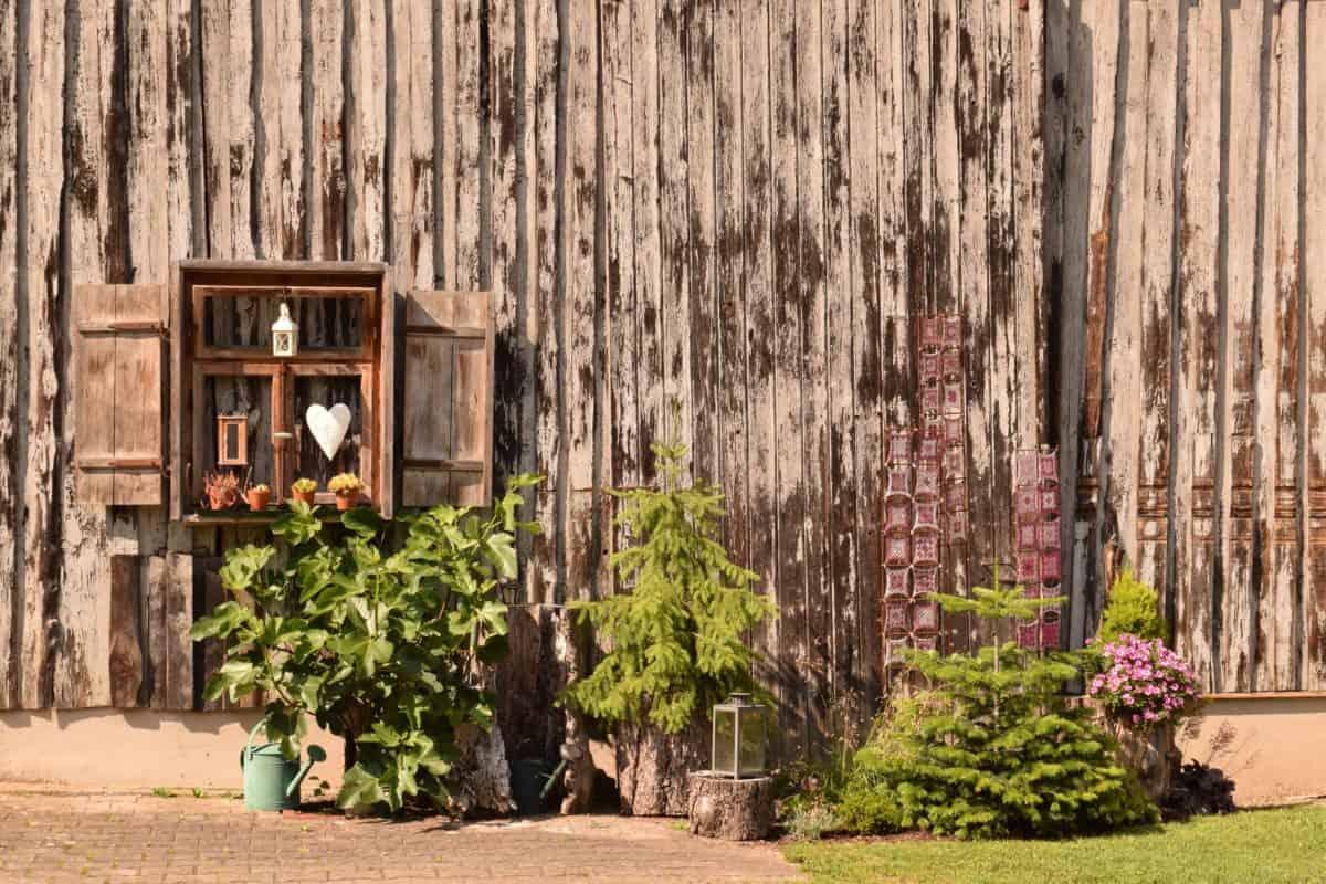 facciata, architettura, vecchio, legno, casa, pianta, autunno