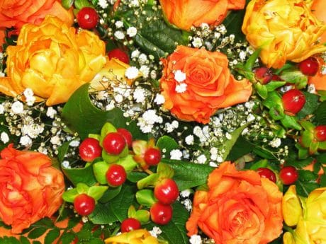 bouquet, petal, rose, flower, arrangement, colorful
