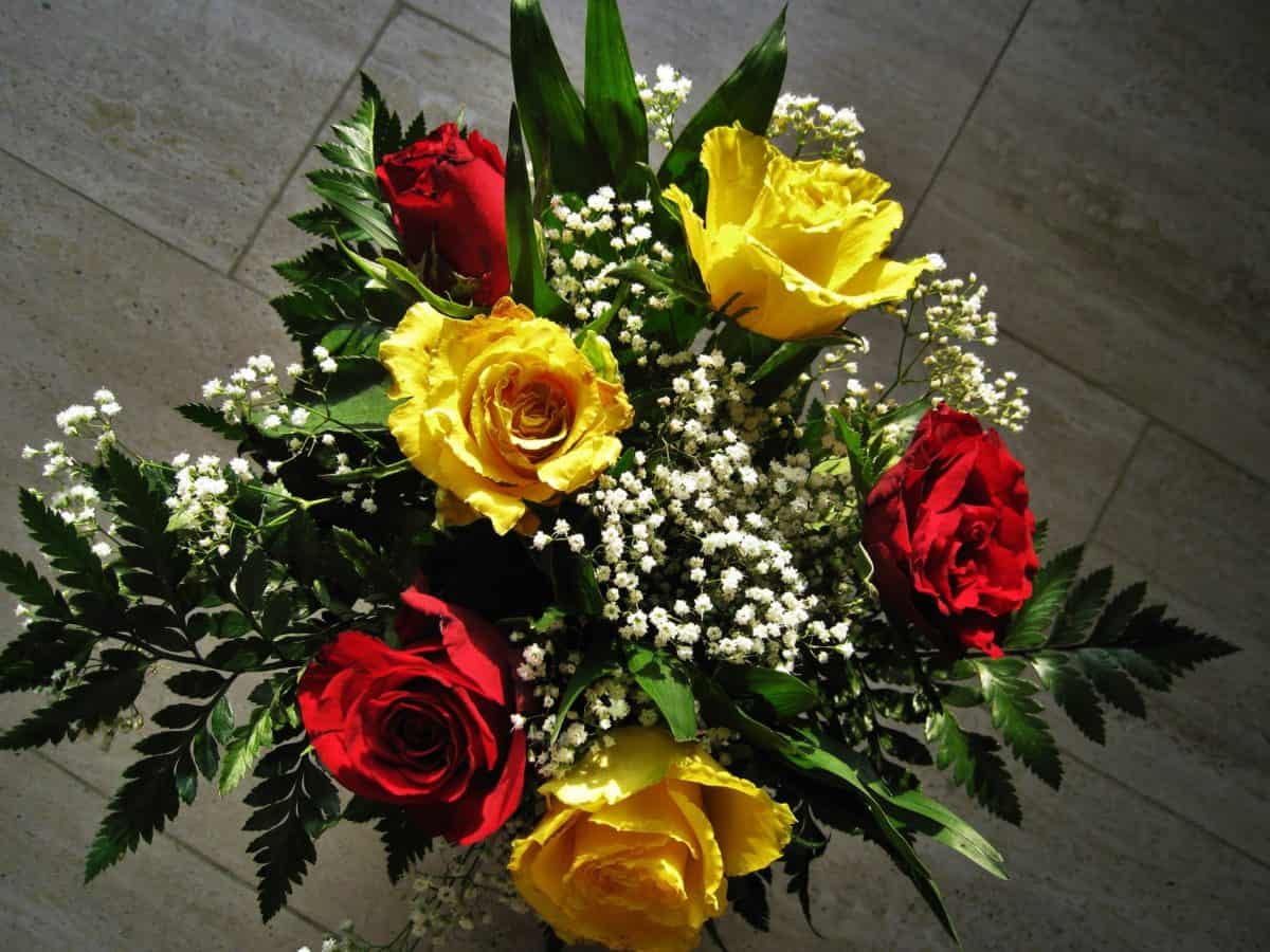 bouquet, green leaf, arrangement, flora, rose, flower, plant