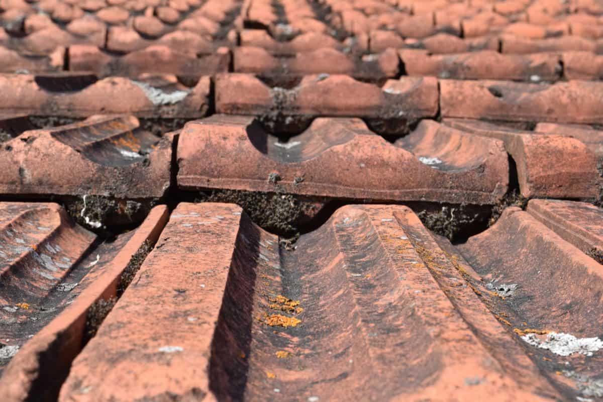 vecchio, tetto, argilla, red, all'aperto, architettura, superficie