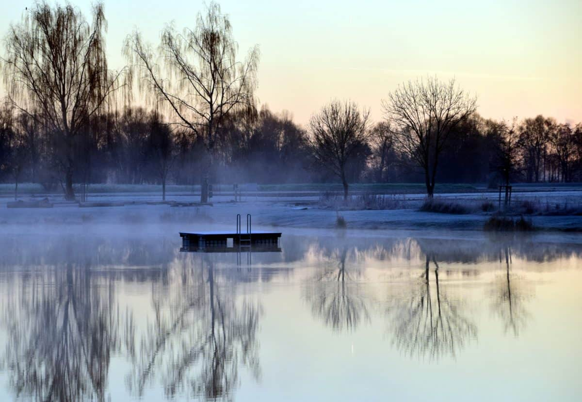 winter, reflection, water, lake, tree, landscape, dawn