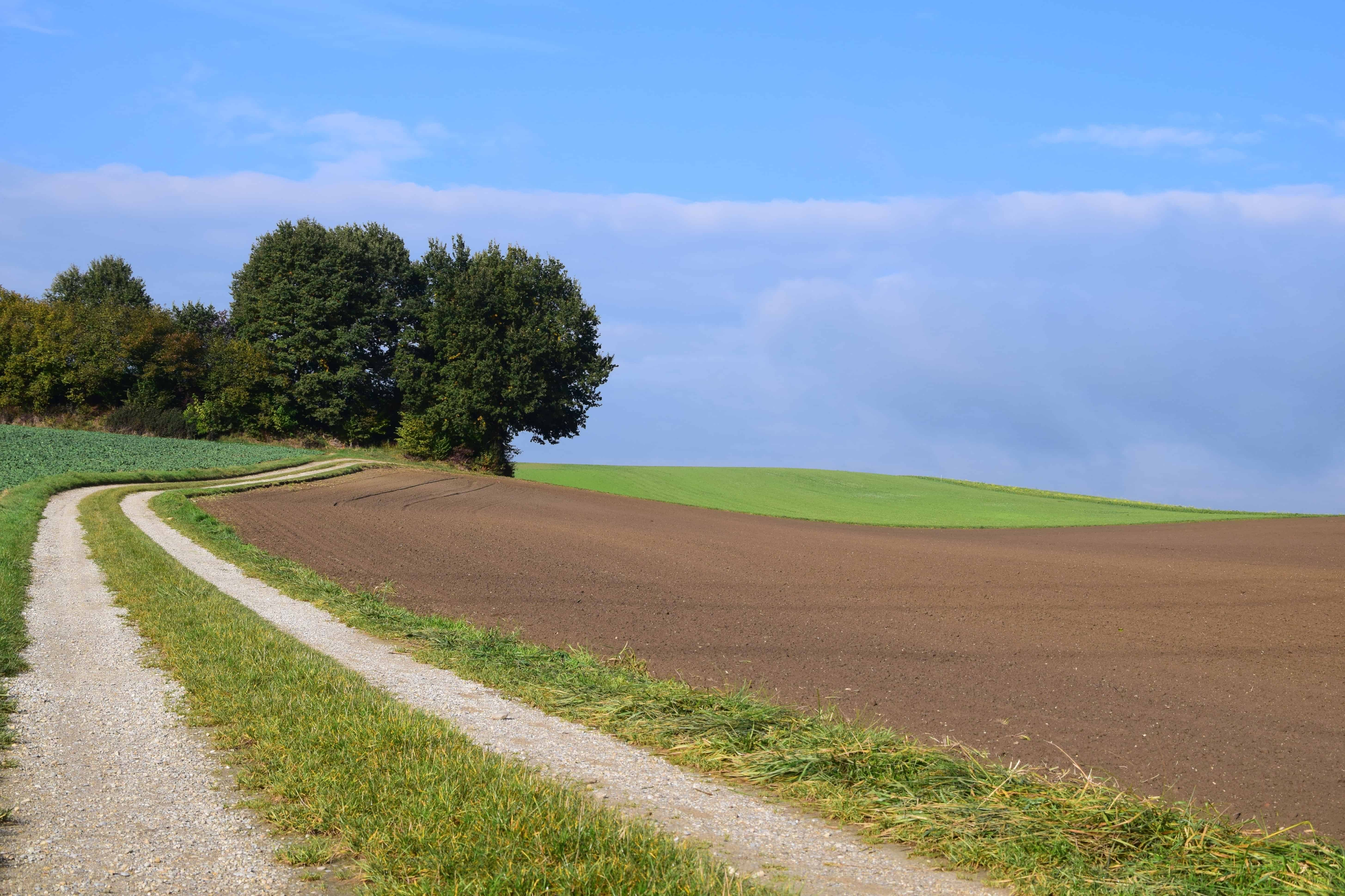 Grass Landscape Free picture road countryside agriculture landscape tree field blue sky countryside nature landscape road field green grass workwithnaturefo
