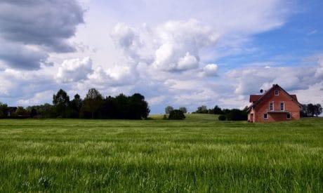 paisagem, agricultura, céu azul, nuvem, grama verde, campo, verão, zona rural