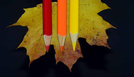 wood, leaf, pencil, autumn, colorful, decoration, dark, shadow