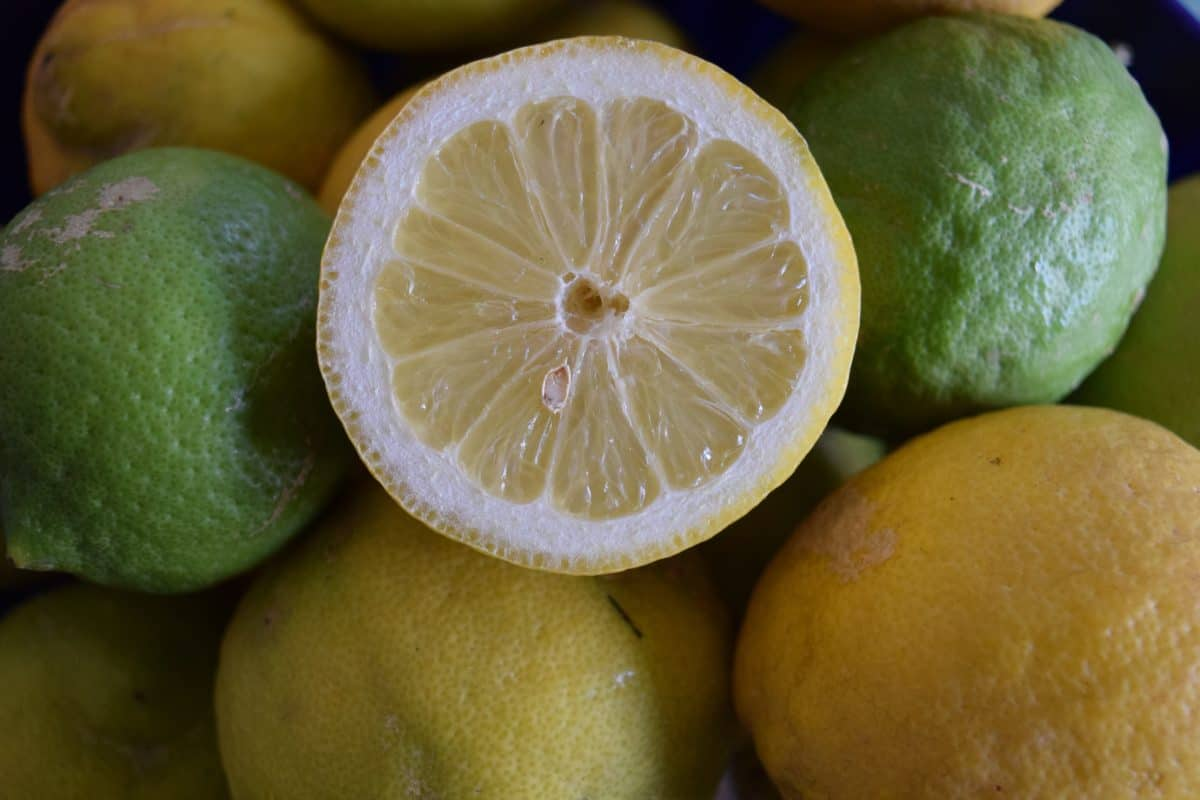 nourriture, fruits, citron, jus de fruits, agrumes, vitamine, alimentation