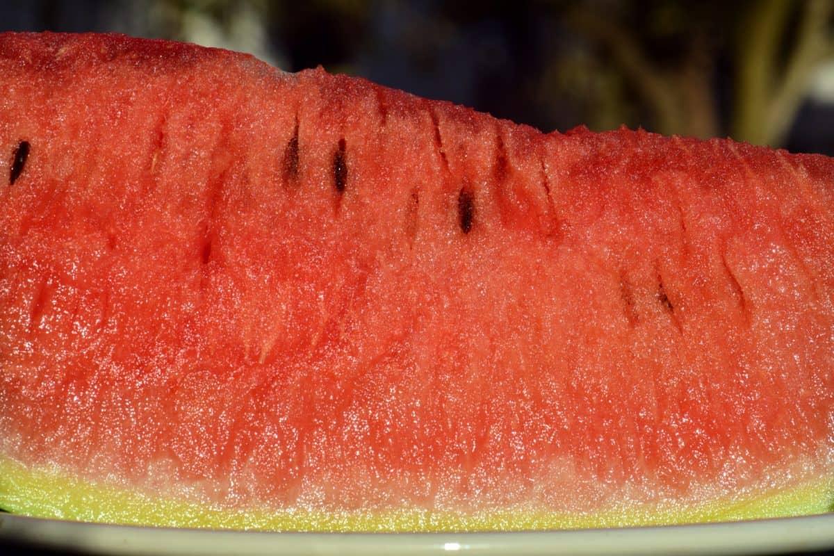 alimento rojo, fruta, rebanada, sandía, dulce, postre