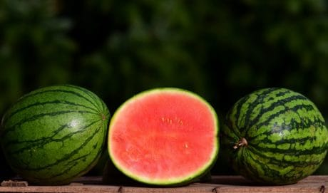 melon d'eau, nourriture, fruits, sucré, alimentation, vitamine