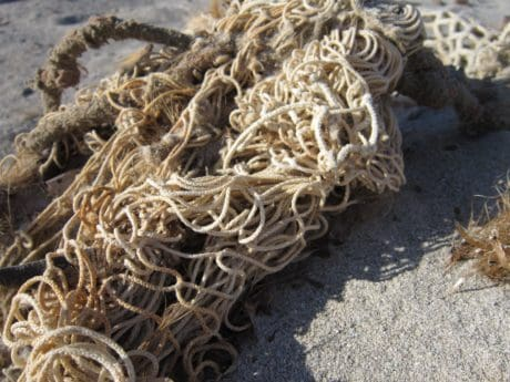 rope, ground, daylight, outdoor, beach, sand