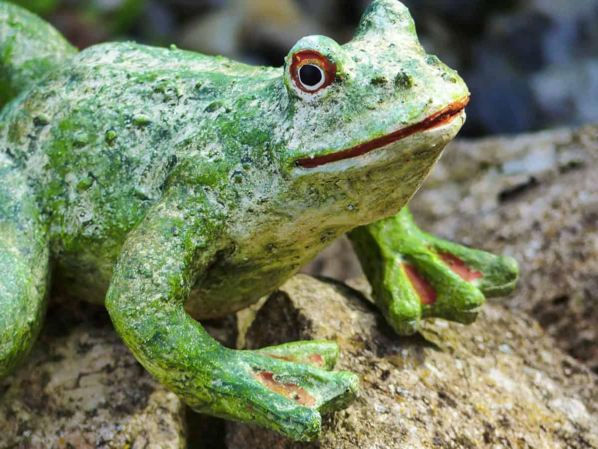 Skulptur, Objekt, Natur, Frosch, Kunststoff, Wildtiere, Amphibien, Auge, Tier
