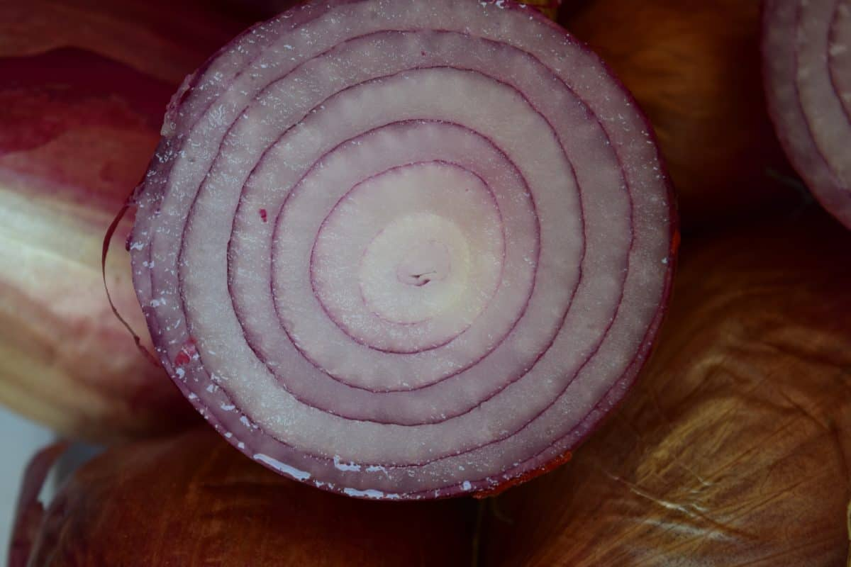 food, nutrition, onion, vegetable