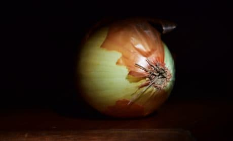 food, onion, stalk, vegetable, fruit, indoor, darkness