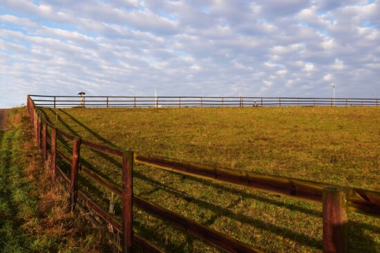 nature, field, fence, agriculture, landscape, grass, sky