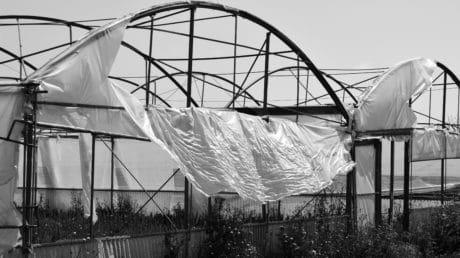 arquitectura, monocromo, invernadero, construcción, agricultura, nylon, metal