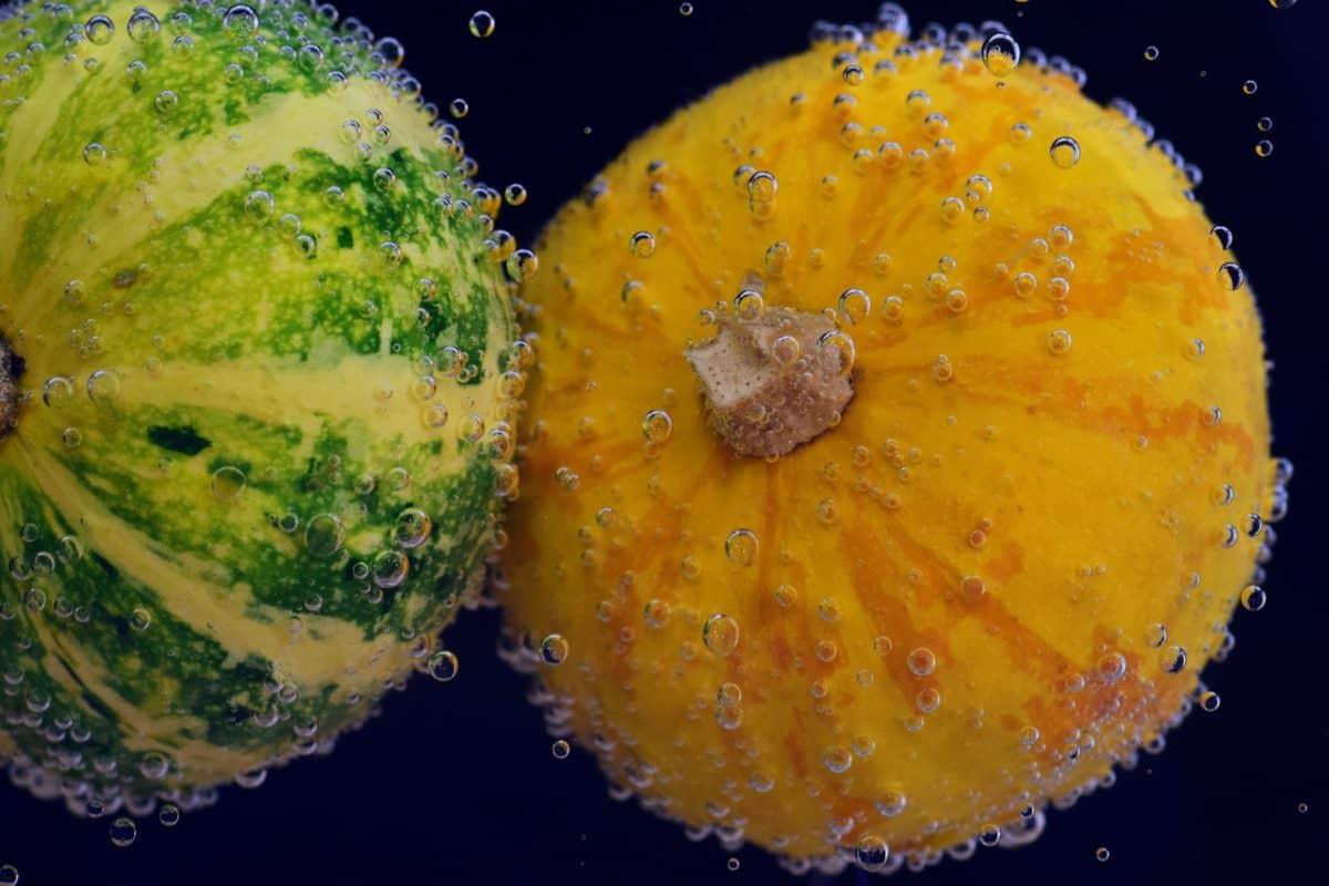water, bubble, liquid, underwater, macro, food, pumpkin, decoration, organic