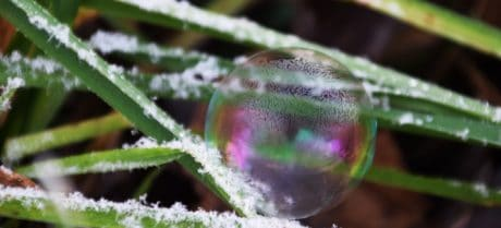 sphere, frost, macro, snowflake, leaf, plant, nature