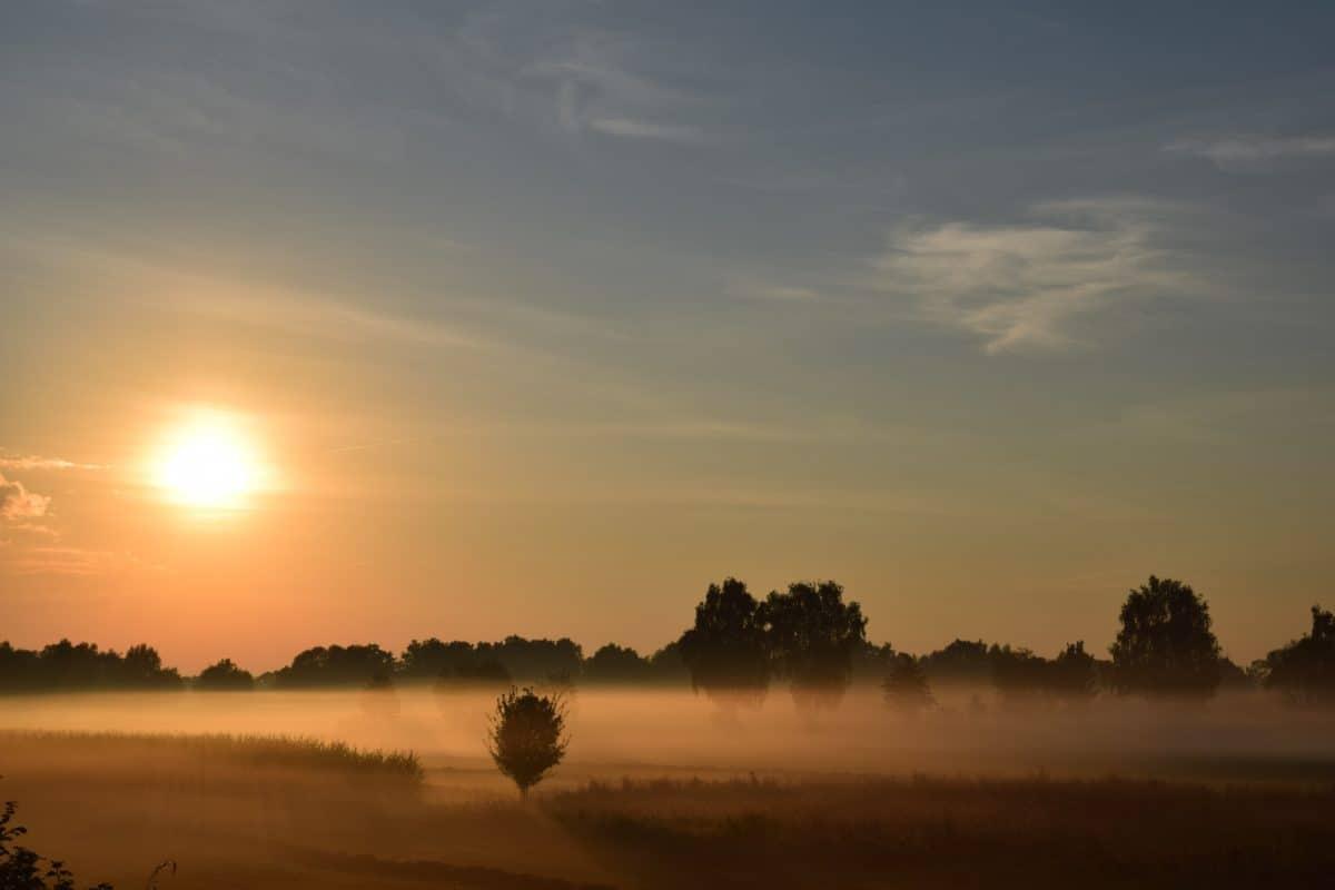 открито, небе, вода, силует, мъгла, Изгрев, облак, поле