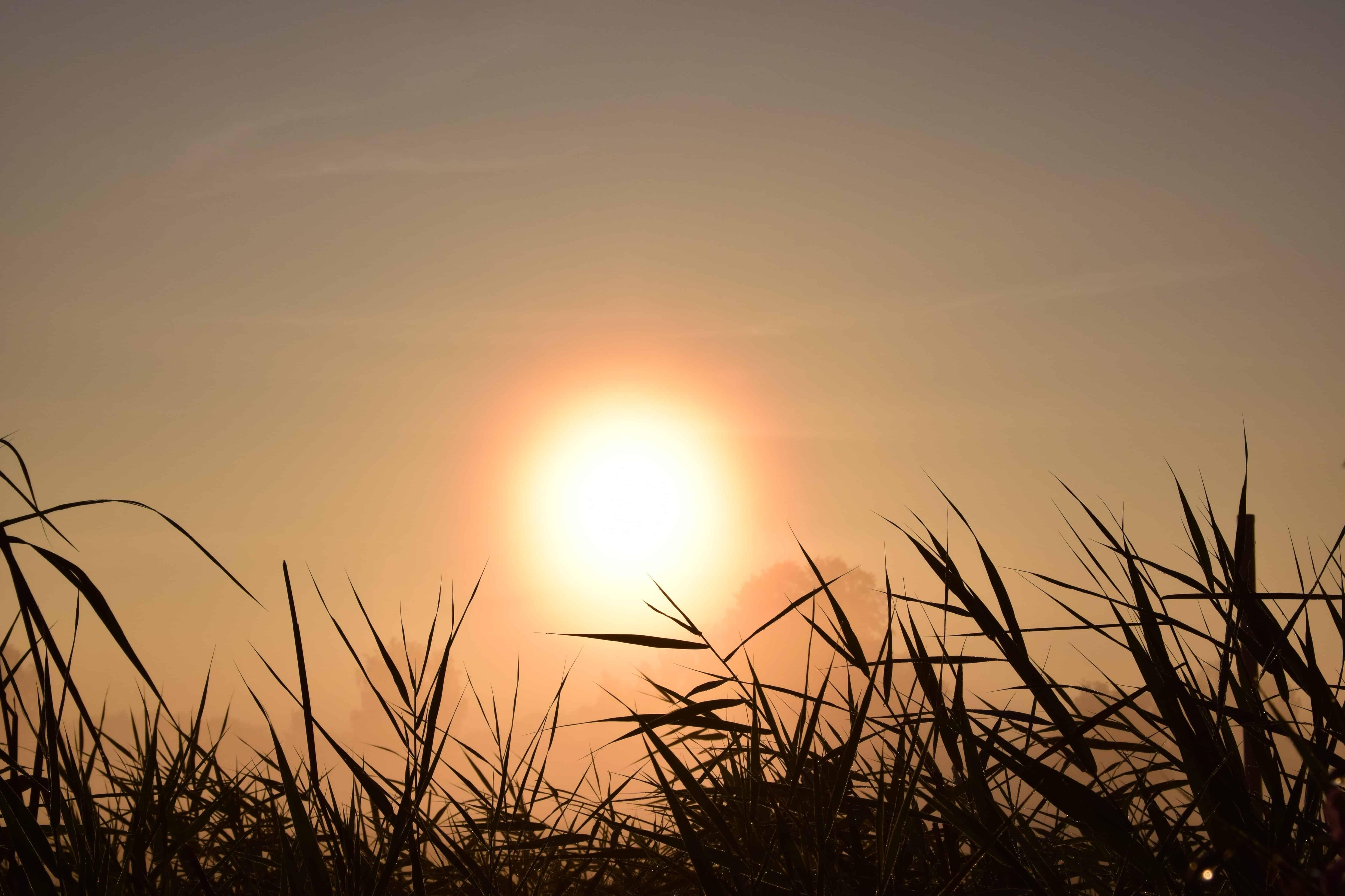 Free picture: sun, sunset, sky, landscape, cloud, sunrise, outdoor