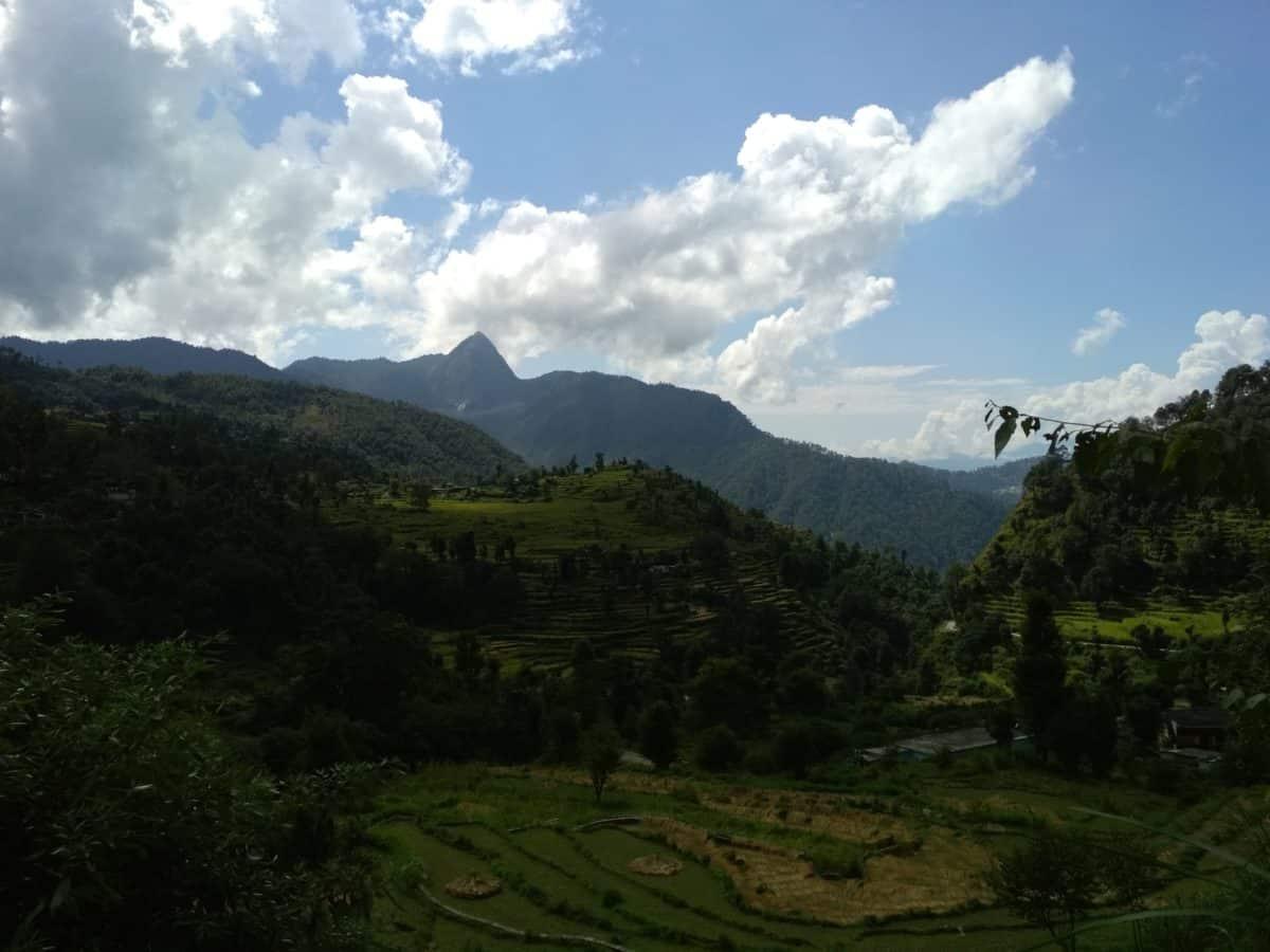 árbol, cielo, madera, paisaje, montaña, naturaleza, colina, nube