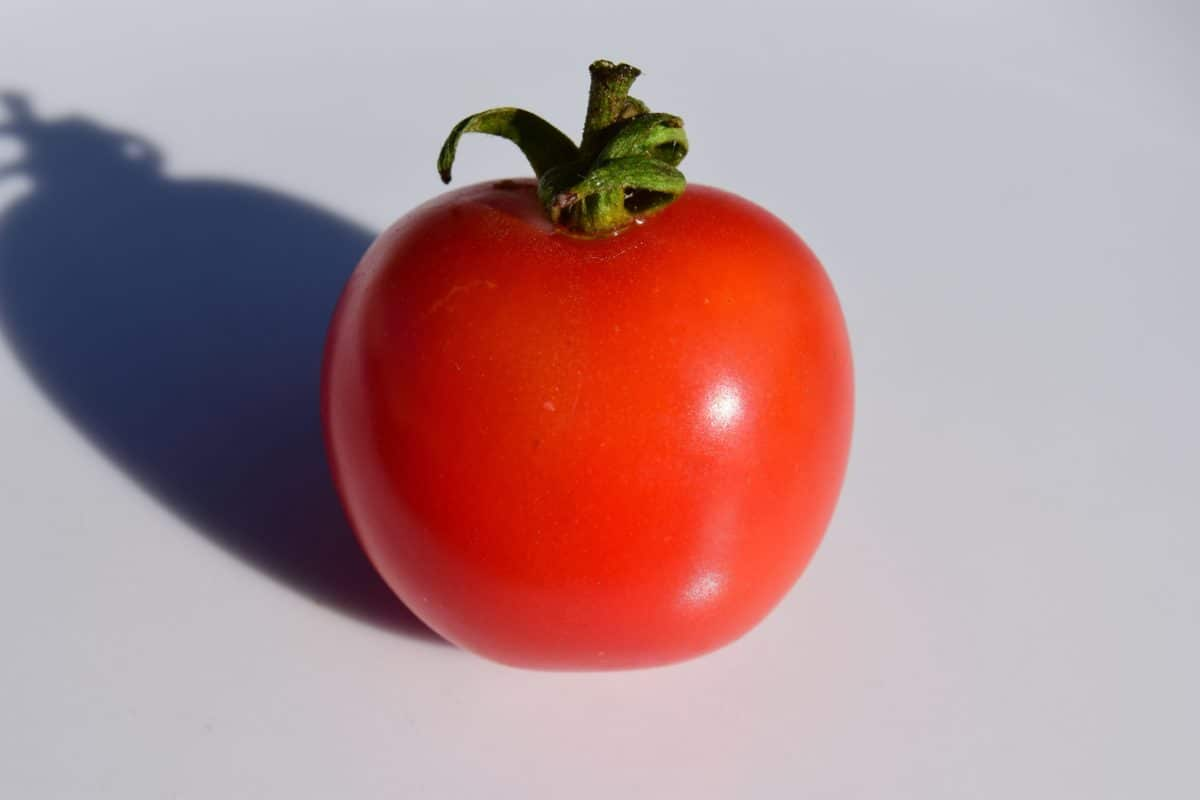 vegetable, tomato, shadow, organic, food, salad, vegetarian, diet