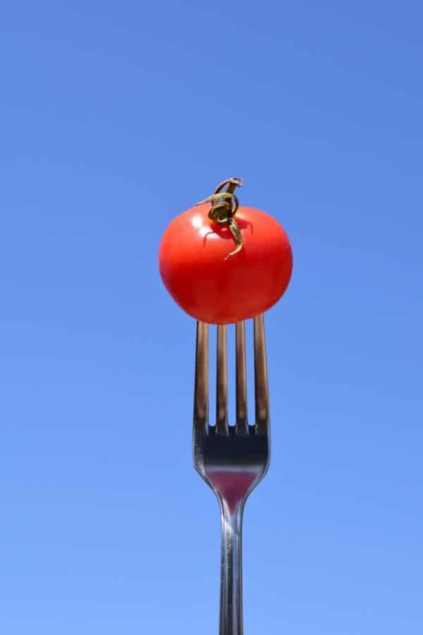 cielo azul, horquilla, metal, hierro, objeto, tomate, comida al aire libre, detalle,
