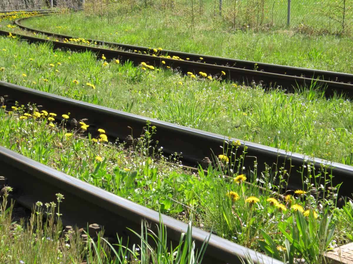 nature, railway, grass, object, iron