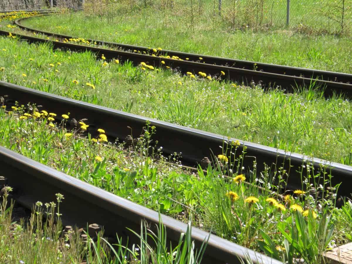 chemin de fer, herbe, objet, nature, fer