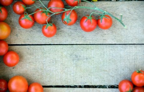 tomato, cherry, vegetable, garden, red, food, nutrition