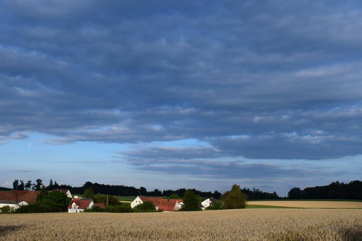 cielo blu, natura, paesaggio, luce diurna, agricoltura, campagna, legale